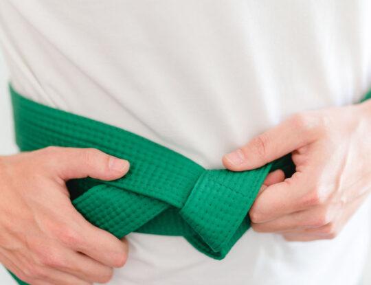 LSS Wisconsin-Lean Six Sigma Green Belt
