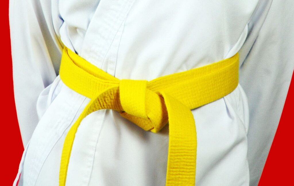 LSS Wisconsin-Lean Six Sigma Yellow Belt